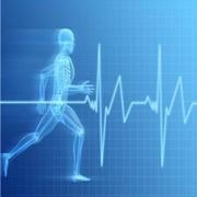 b_fitness-kardiogramm